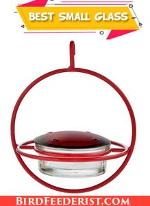 Best Small Glass hummingbird feeder