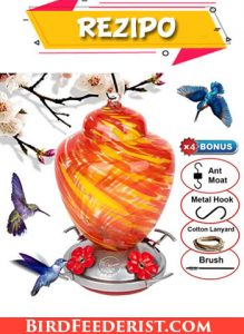 REZIPO Hummingbird Feeder with Perch & Ant Moat