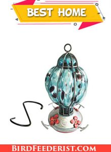 Best Home Products Hummingbird Feeder with Perch