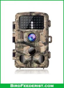 Campark-Trail-Camera-review