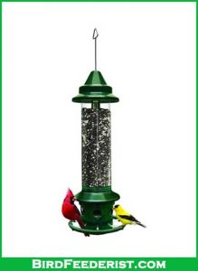 Squirrel-Buster-Plus-Squirrel-proof-Bird-Feeder-review