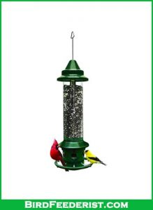 Squirrle-Bustr-plus-Squirrle-proof-bird-feeder-with-cardinal-ring-review