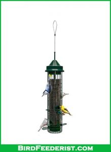 Squirrel Buster Classic Squirrel proof Bird Feeder review
