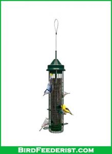 Squirrel-Buster-Classic-Squirrel-proof-Bird-Feeder-review
