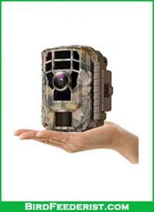 Campark-Mini-Trail-Camera-review