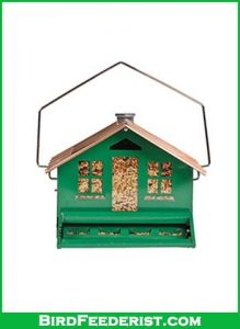 Perky-Pet-339-Squirrel-Be-Gone-II-Feeder-Home-with-Chimney-review