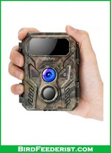 Victure-Mini-Trail-Game-Camera-review