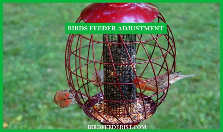 How to adjust the Squirrel-Proof Bird Feeder to keep the squirrel away?