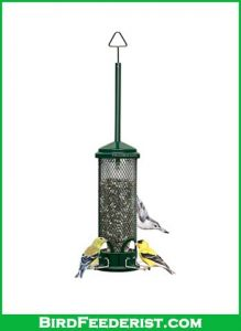 Squirrel-Buster-Mini-Squirrel-proof-Bird-Feeder-review