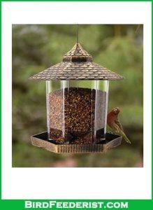 Twinkle-Star-Wild-Bird-Feeder-review
