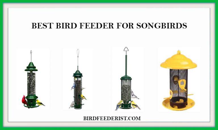 The 5 Best bird feeders for Songbirds | Buyer's Guide & Reviewed by BirdFeederist