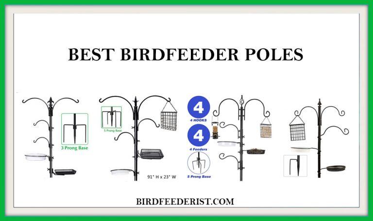 The 5 Best Bird feeder Poles that actually works 2021 by Birdfeederist