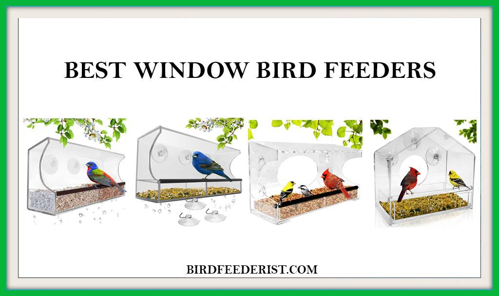 BEST-WINDOW-BIRD-FEEDERS