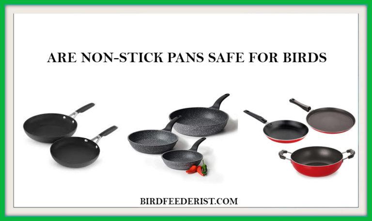 Are Non-stick pans safe for birds? by BirdFeederist