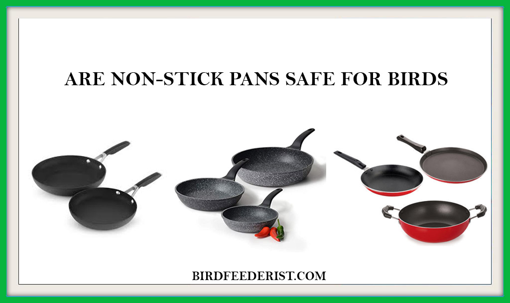 ARE NON-STICK PANS SAFE FOR BIRDS