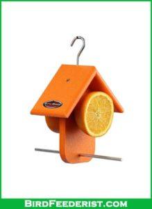 Kettle Moraine Oriole Orange Fruit Feeder