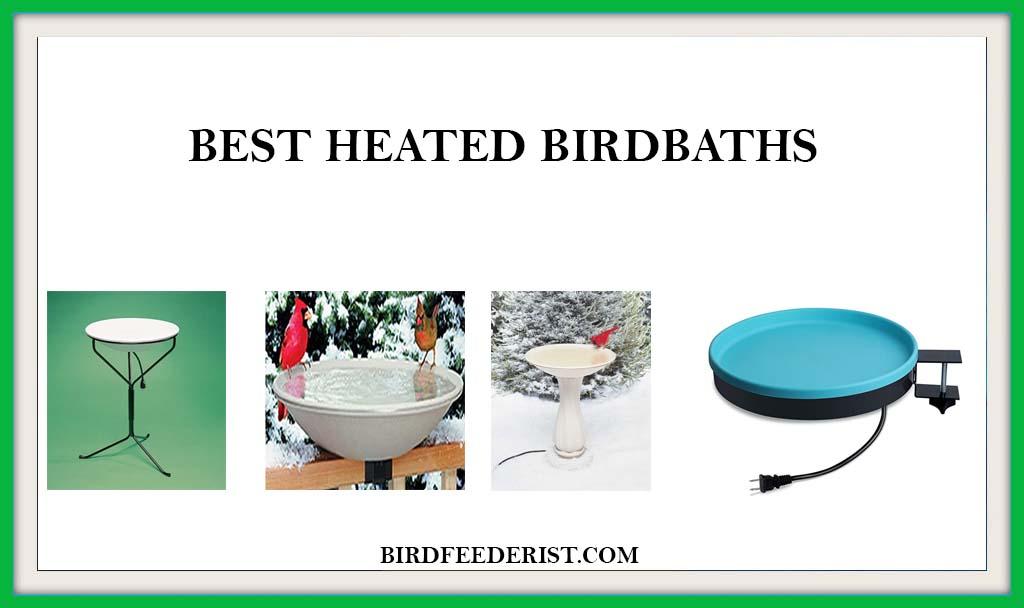 BEST HEATED BIRDBATHS