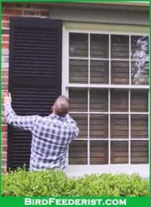 external shutters