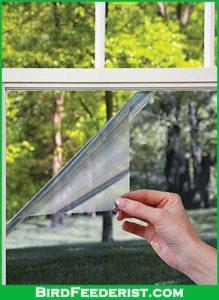 transparent film