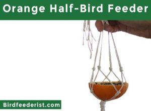 Orange Half-Bird Feeder
